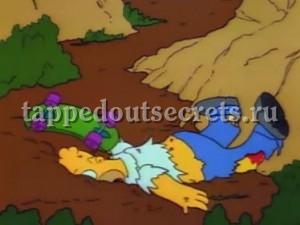 скейт под Гомером уже не остановить.
