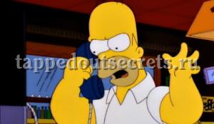 В этот момент в НАСА звонит Гомер, и там понимают, что они нашли того, кто им нужен.