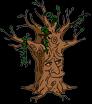 Дух древнего древа